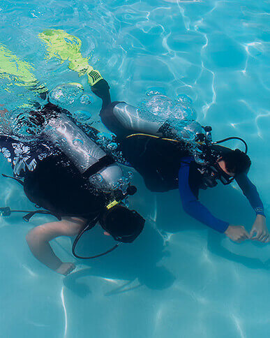 Diving lessons and courses
