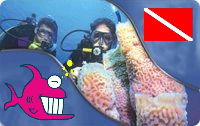 immersione subacquea taranto