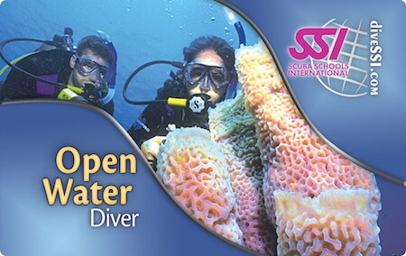 Scuola subacquea Taranto