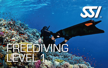 freediving level 1-Taras Sub Diving Center
